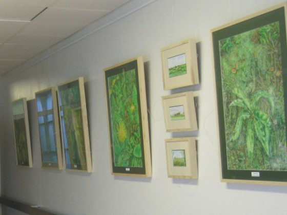 'Head in the Hedgerow', Roscommon University Hospital's inaugural art exhibition.