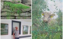 'Head in the Hedgerow' opened at University Hospital Galway